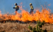 Paląca się trawa i strażacy