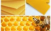 Węza pszczela